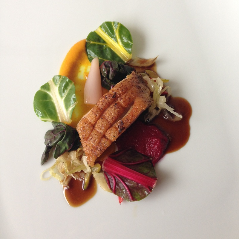 duck-breast-turmeric-beet-swiss-chard-5